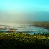 Озеро на Алтае :: Виктор Гузеев
