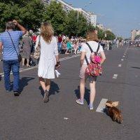 Abbey Road по- русски :: Валерий Михмель