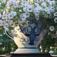 Цветы Летнего сада :: Наталья Герасимова