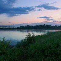 И дремлют прибрежные травы... :: Нэля Лысенко