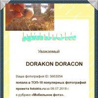 Ф К :: DORAKON DORACON