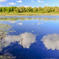 Облака в воде.. :: Юрий Стародубцев