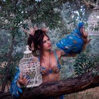 синяя птица :: Марина Макарова