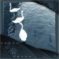 А белый лебедь на пруду... :: Анара
