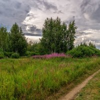 Дорога домой :: Андрей Дворников
