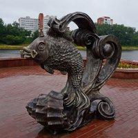 Золотая рыбка. Витебск. Белорусь :: Сергей Щеблыкин