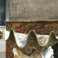 натуральна раковина- кропильница –  дар Франциску I от Венецианской республики. :: ИРЭН@ .