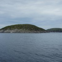 Необитаемые острова в Белом море :: Елена Павлова (Смолова)