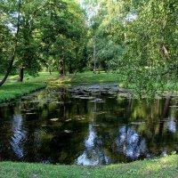 Уголок Гатчинского парка :: Nina Karyuk