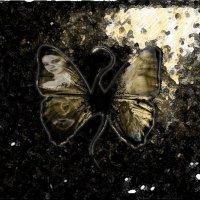 бабочка :: Юлия Денискина