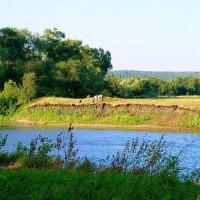 Вдоль берега тихой речки ... :: Татьяна Котельникова
