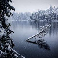 Зима :: Александр Тарасенко