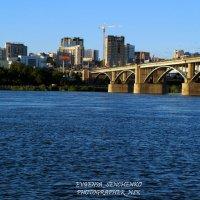 Мост Новосибирска :: Евгения Сенченко
