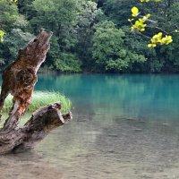 Плитвицкие озера (Хорватия) :: tamara *****