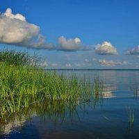 Облака - кучерявые барашки :: Olcen Len
