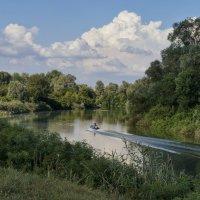 Река Афипс :: Андрей Майоров