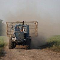 От резиновых копыт пыль по полю летит :: Андрей Еремеев