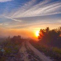 Солнце, утонувшее в тумане! :: Елена (Elena Fly) Хайдукова