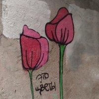 Это цветы :: Татьяна [Sumtime]