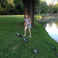 Охота на голубей. :: Татьяна