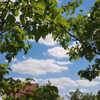 Летние облака :: Генрих