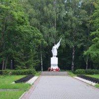 Великие Луки. Братское кладбище :: Владимир Павлов