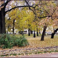 Осенний парк :: vadim