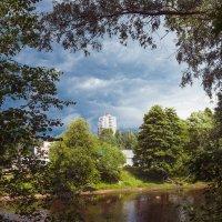 Перед дождём (2) :: Виталий