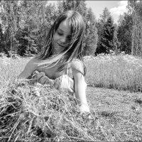 Сенокос :: galina bronnikova