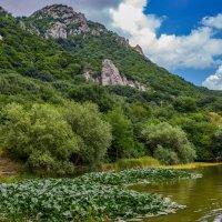 Монастырское озеро :: Николай Николенко
