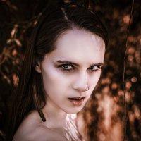 Spirit of the Forest :: Виталий Шевченко