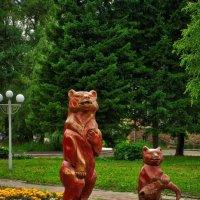 медведи в городе :: Alexandr Staroverov
