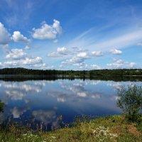 Гусевское озеро :: Сергей Никитин