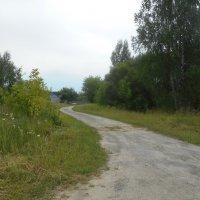 Дорога, уходящая вдаль :: Tarka