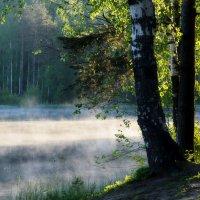 Майское утро............ :: Юрий Цыплятников