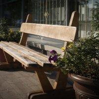 Старая уютная скамейка :: alteragen Абанин Г.