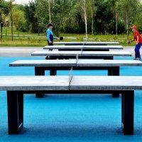 Пинг-понг в парке :: Анатолий Колосов