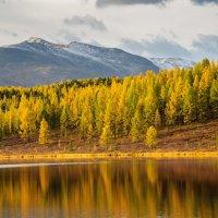 Осень :: Максим Бородин