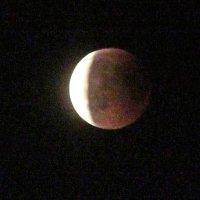 Лунное затмение :: Лариса
