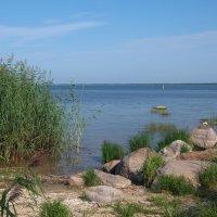 Летом у Чудского озера :: lady v.ekaterina