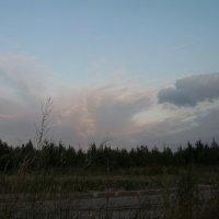 домашнее небо :: sv.kaschuk