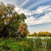 img_5772 :: Сергей Козлов
