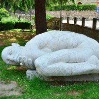 Устала от жары :: Николай Танаев