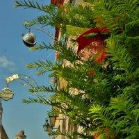 Ротенбург  на Таубере :: backareva.irina Бакарева
