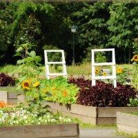 Сиреневый сад в июле :: Mamatysik Наталья Бурмистрова