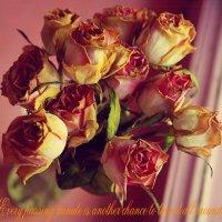 Rose :: Мила Соловьева