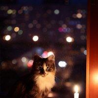 Когда нежданно отключают свет... :: Артур Миханев