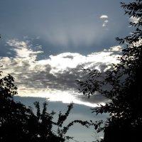 Время близится к закату... :: Татьяна Латкина