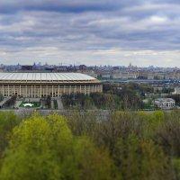 Лужники на фоне Москвы :: Grishkov S.M.