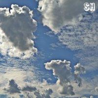 Небо :: Саша Веселова